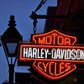 Harley Davidson New Orleans by Bill Cannon