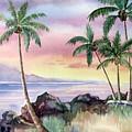 Hawaiian Sunset by Deborah Ronglien