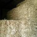 Hay Bales by Emily Kelley