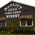 Hazlitt Winery 1852 by David Lee Thompson