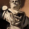 Head Of Nero In Venice by Michael Henderson