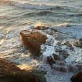 Heart Rock by Michael Rock