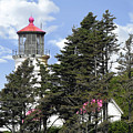 Heceta Head Lighthouse - Oregon's Iconic Pacific Coast Light by Christine Till
