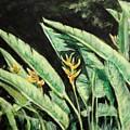 Heliconia Flower 7 by Usha Shantharam