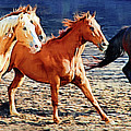 Herd Of Horses by Clarence Alford
