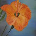 Hibiscus Flower  by Albert Douglas
