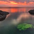 Hidden Green by Evgeni Dinev