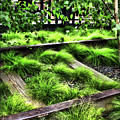High Line Nyc Railroad Tracks by Joan  Minchak