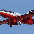 High Speed Promotions Aerovodochody L-39 Albatross N391za Mesa Gateway Airport Arizona March 11 2011 by Brian Lockett