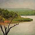 Hills And Lake In The Spring by Lisa Porier