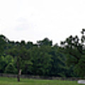 Historic Appomattox Panorama  by Teresa Mucha