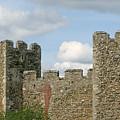 Historic Castle by Ann Horn