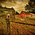 Homestead Palouse by Dale Stillman