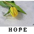 Hope by Traci Cottingham