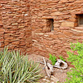 Hopi House Garden by Julie Niemela