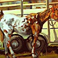 Horse And Trailer by Brian Simons