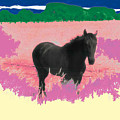 Horse In A Dreamfield 7 by Lyle Crump