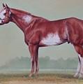 Horse Portrait by Hans Droog
