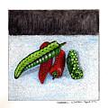 Hot Peppers Take1 by Kathleen Walker