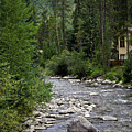 House By The Stream In Vail 1 by Madeline Ellis