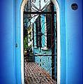 House Door 4 In Charleston Sc  by Susanne Van Hulst