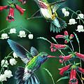 Humming Birds 2 by JQ Licensing