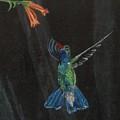 Hummingbird by Jamie Frier