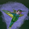 Hummingbird by Mary Tuomi