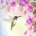 Hummingbird With Fuchsia by Leona Jones