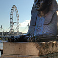 I Sphinx It Is The London Eye by Chris Day