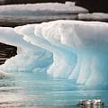 Ice Bears by Elisabeth Van Eyken