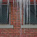 Icicles 2 - In Front Of Windows Off Red Brick Bldg. by Steve Ohlsen