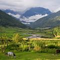 Idyllic Landscape Arunachal Pradesh by Sam Oppenheim