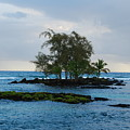 Island At Carlsmiths by Steven Rice