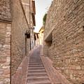 Italian Steps by Ian Middleton