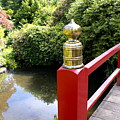 Japanese Bridge by Sonja Anderson