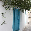 Jasmine And Blue Door by Yvonne Ayoub