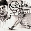 Joe Dimaggio by Kathleen Kelly Thompson