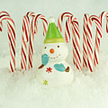 Jolly The Snowman II by Valerie Fuqua