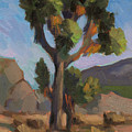 Joshua Tree 2 by Diane McClary