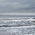 Just A Grey Day by Lori Tambakis