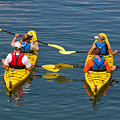 Kayakers In Bar Harbor Maine by Louise Heusinkveld