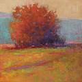 Keene Valley Field by Susan Williamson