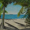 Key West Clearing by John Schuller