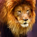 King by Michael Greenaway