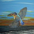 Kingfisher Of Eftalou by Eric Kempson