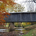 Kissing Bridge At Fall by Eric Liller