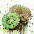 Kiwi 1 by Arleana Holtzmann