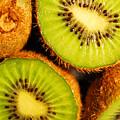 Kiwi Fruit by Nancy Mueller