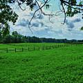 Knox Farm 1786 by Guy Whiteley